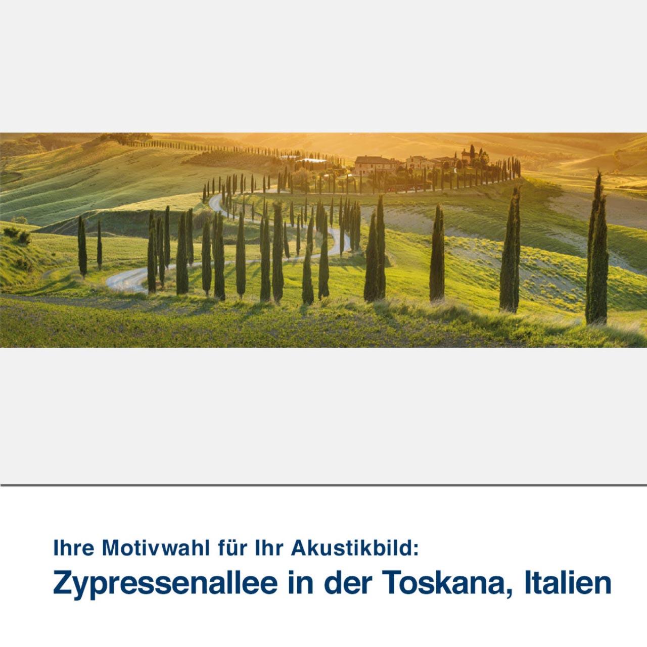 Akustikbild Motiv Zypressenallee in der Toskana, Italien