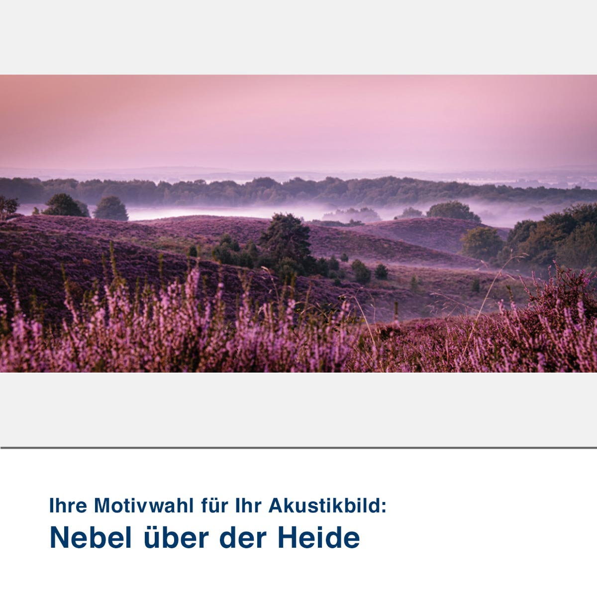 Akustikbild Motiv Nebel über der Heide