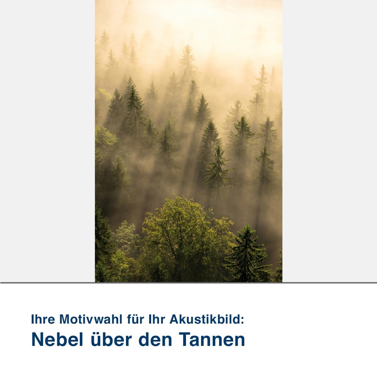 Akustikbild Motiv Nebel über den Tannen