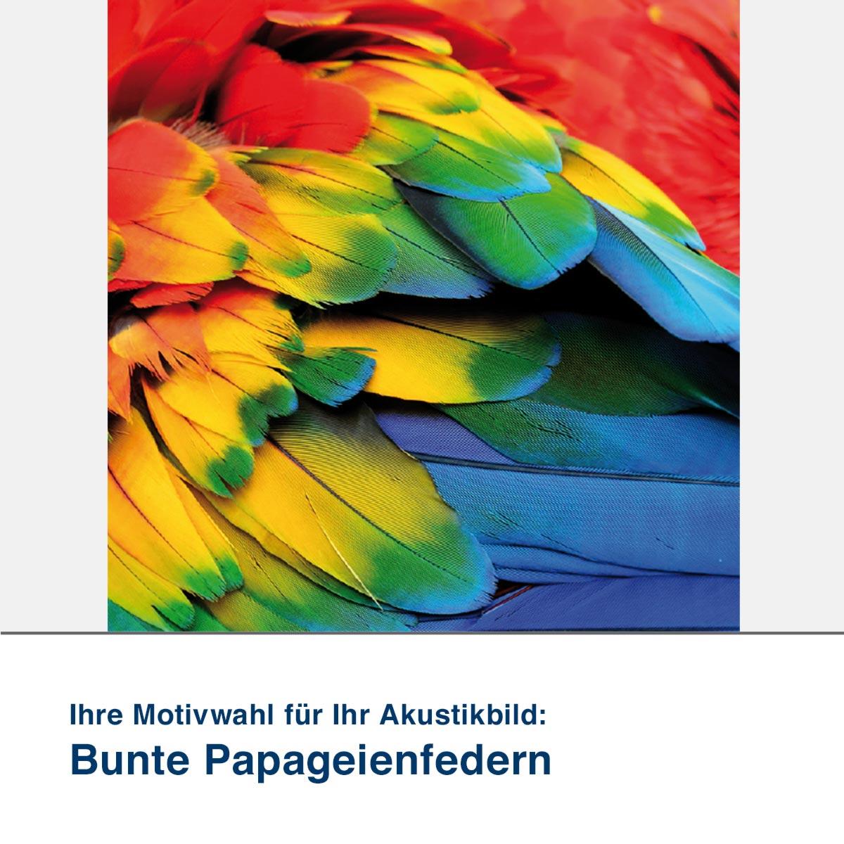 Akustikbild Motiv Bunte Papageienfedern