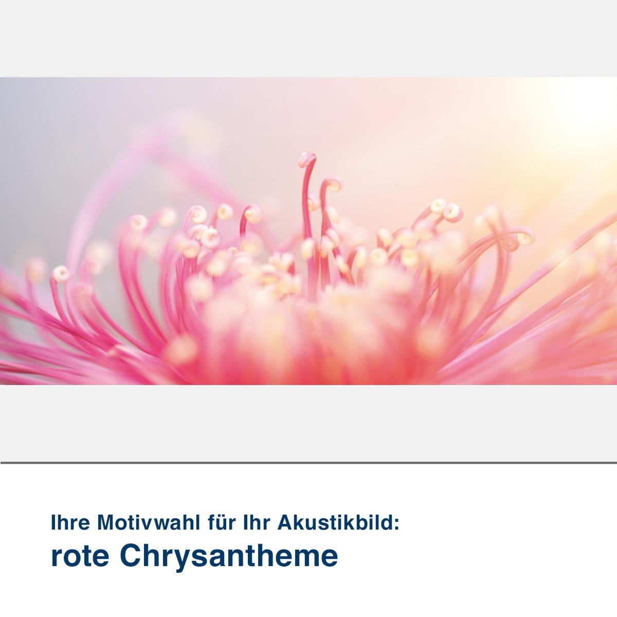 Akustikbild Motiv rote Chrysantheme