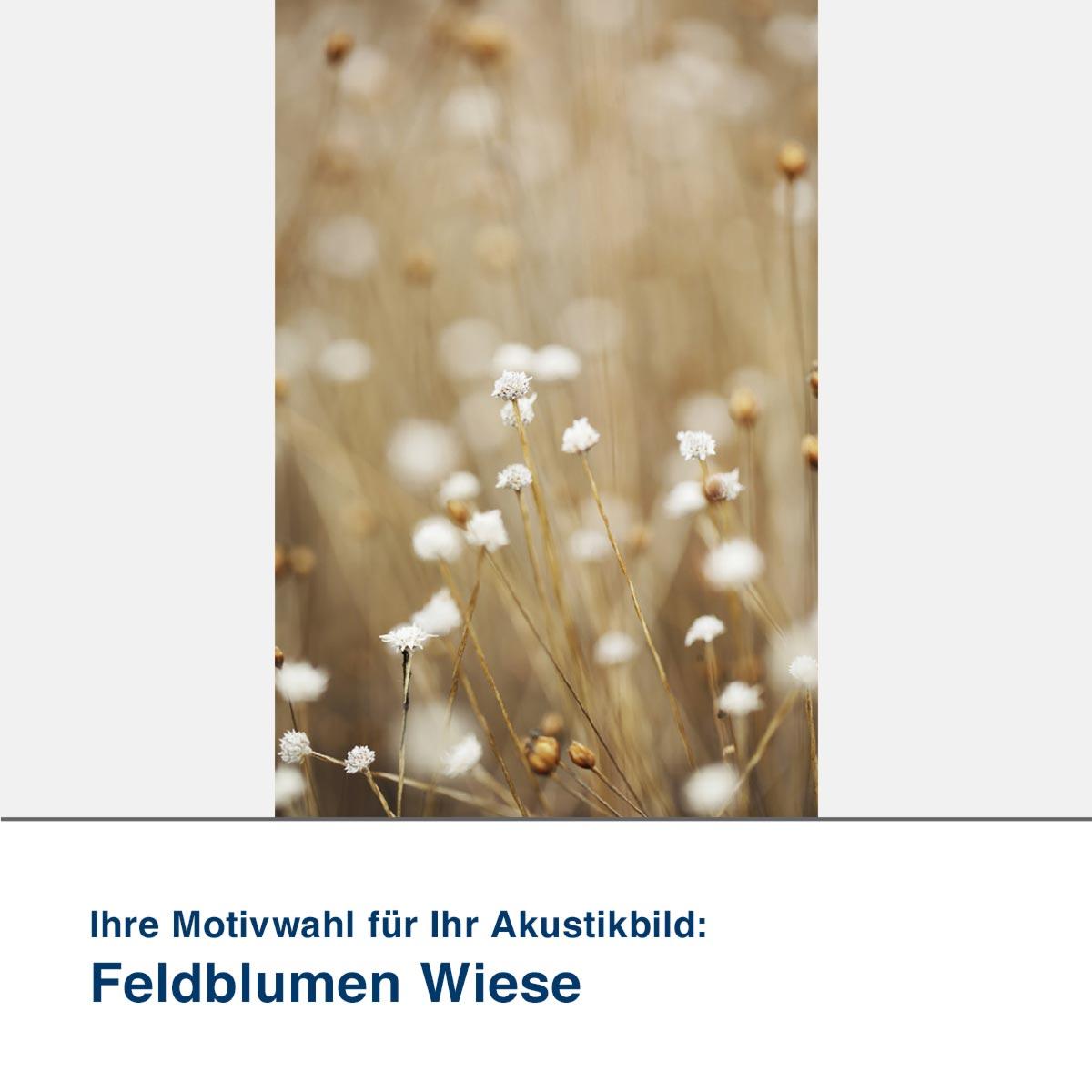 Akustikbild Motiv Feldblumen Wiese