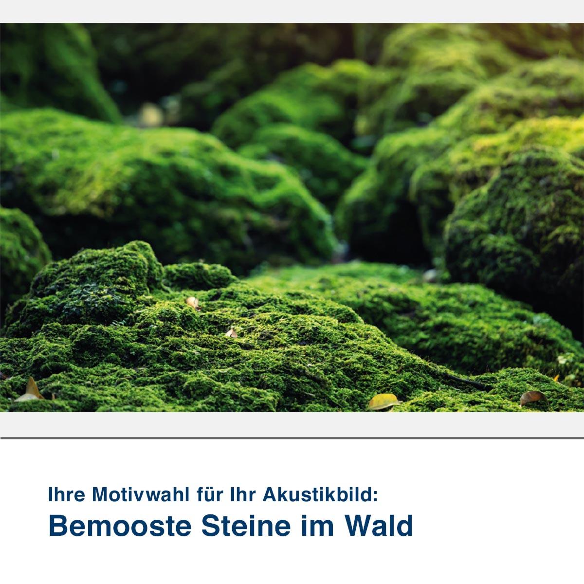 Akustikbild Motiv Bemooste Steine im Wald
