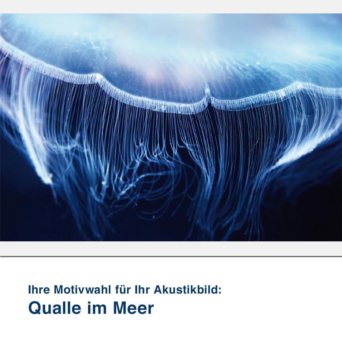 Akustikbild Motiv Qualle im Meer