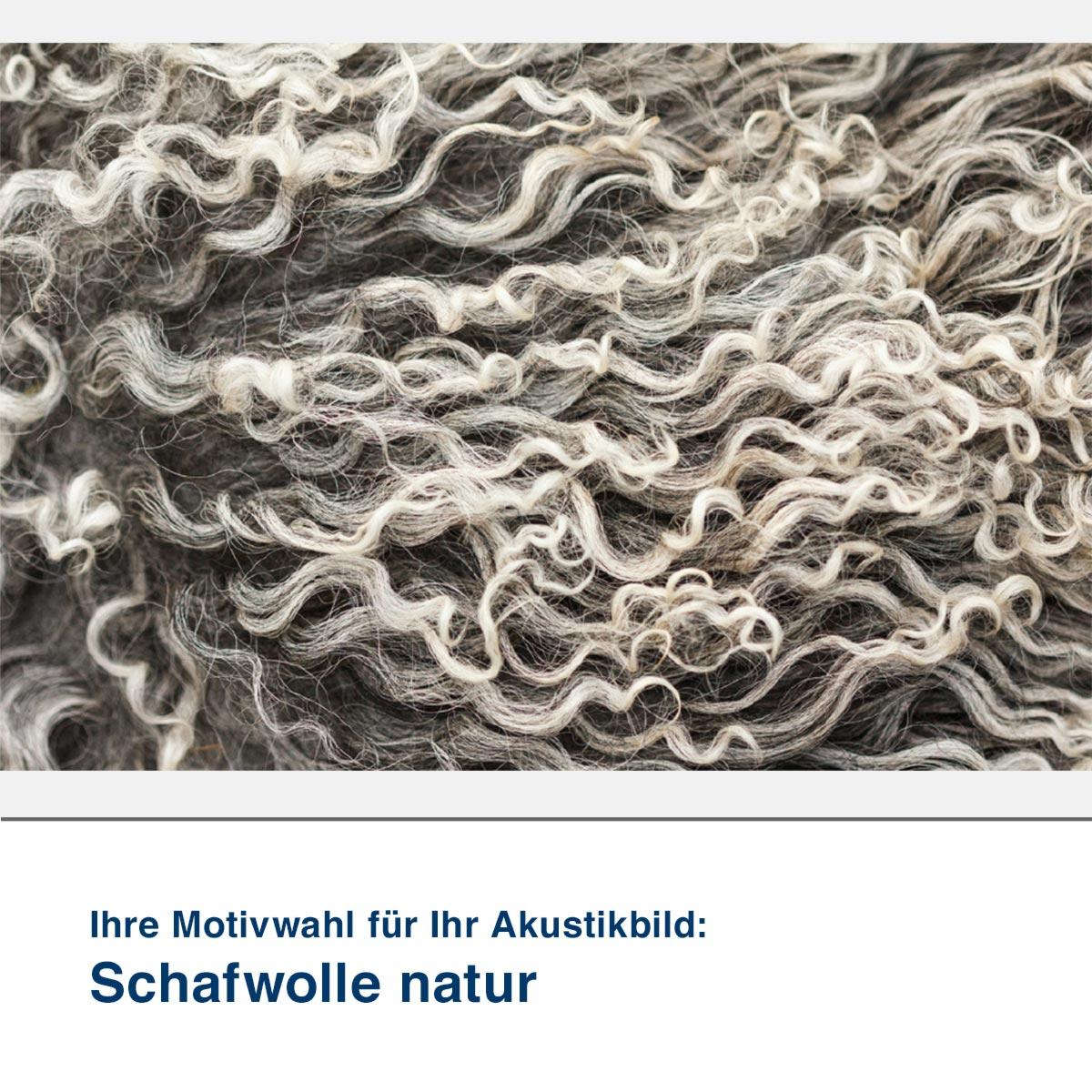 Akustikbild Motiv Schafwolle natur
