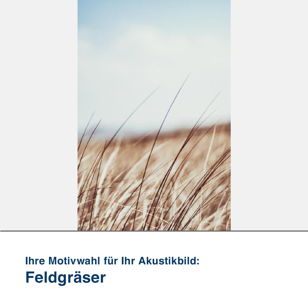 Akustikbild Motiv Feldgräser