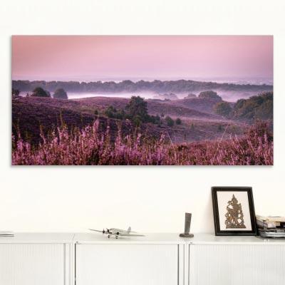 Akustikbild Nebel über der Heide