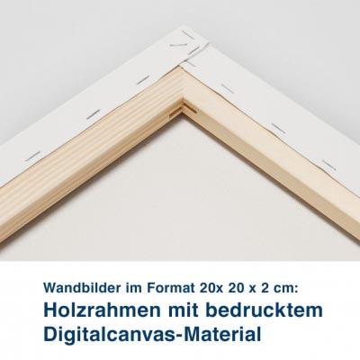 Wandbilder im Format 20x 20 x 2 cm:  Holzrahmen mit bedrucktem  Digitalcanvas-Material